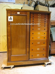 Vign_Armoire_The_Grant_Museum_Zoology_1-